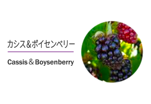 eyecatch_project06_veryberry